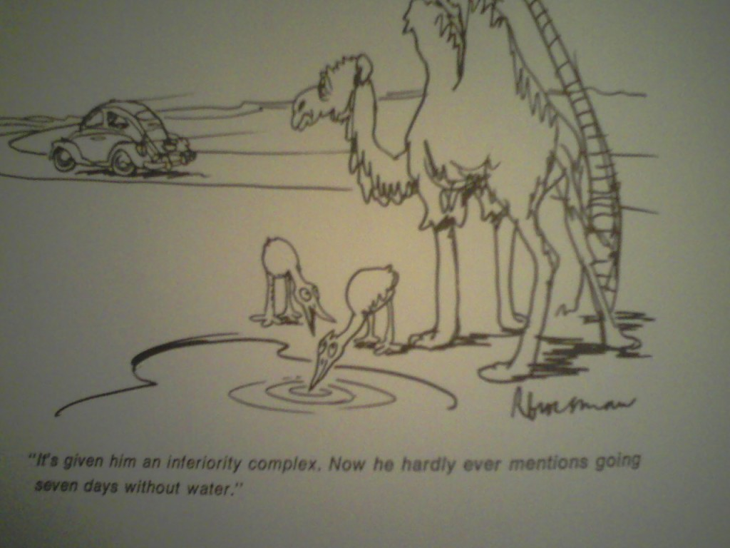 One the cartoons included in the book.