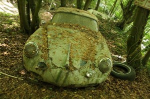 Rotting Porsche in the forest. Photo courtesy of http://www.messynessychic.com/2014/04/30/the-vintage-supercars-rotting-away-in-a-forest-because-thats-how-the-owner-wants-it/